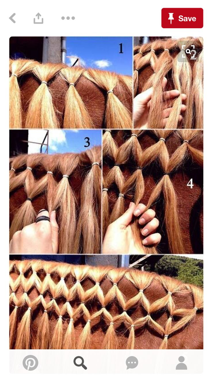 Beautiful braid for a long mane on a horse! Give it a try it's soooo easy and extremely beautiful.