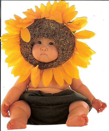 Anne Geddes, sunflower baby