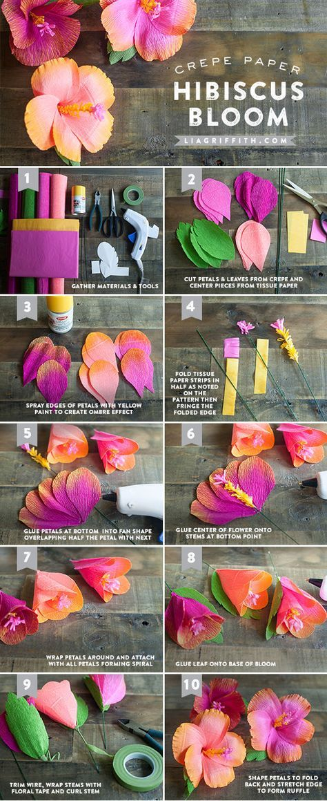 DIY Crepe Hibiscus Paper Flowers Pictures, Photos, and Images for Facebook, Tumblr, Pinterest, and Twitter