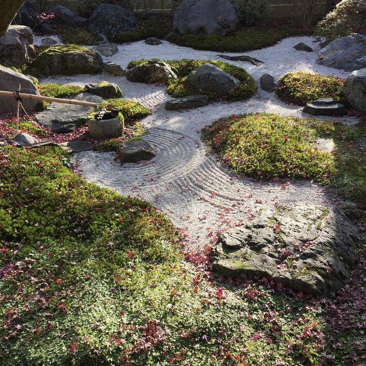 #そうだ京都行こう  #京都 #枯山水 #日本庭園