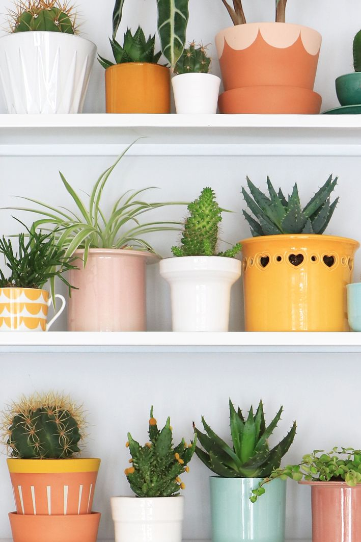 Styling with plants & flowerpots for vtwonen