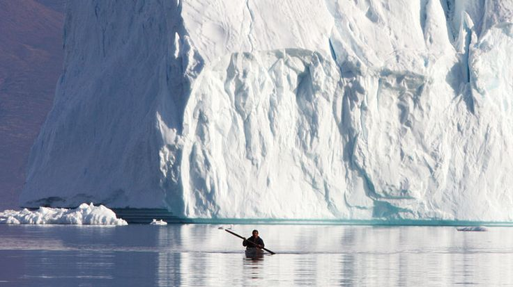 saq Qujaukitsoq paddles in his kayak near Qaanaaq, Greenland. He and other hunters still use traditional Inuit equipment and techniques to sneak up on narwhals, and that's helping researchers study these elusive arctic whales.wide: A hunter paddles his kayak near Qaanaaq, Greenland.