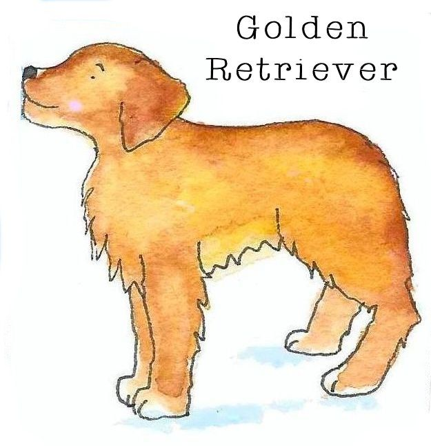 Golden retriever  www.etsy.com/shop/flapdoodledesigns