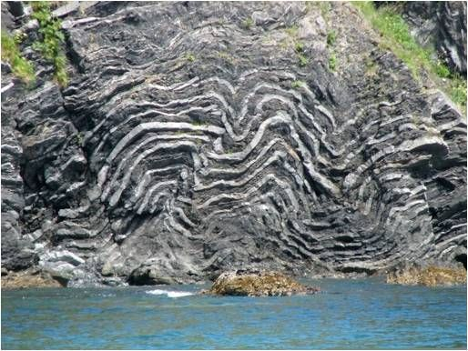 Soft sediment deformation in Kodiak