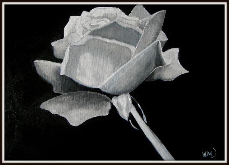 Rose in gray. Paintings on camvas by Art Online