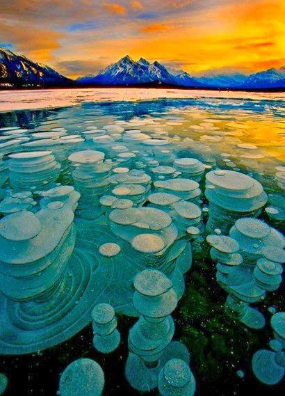 Frozen Bubbles, Abraham Lake, Alberta, Canada Bubbles trapped and frozen under a thick layer of ice creating a glass type feel to the frozen lake.: Thick Layered, Alberta Canada, Frozen Lakes, Lakes Abraham, Frozen Bubbles, Ice Create, Places, Glasses Types, Abraham Lakes