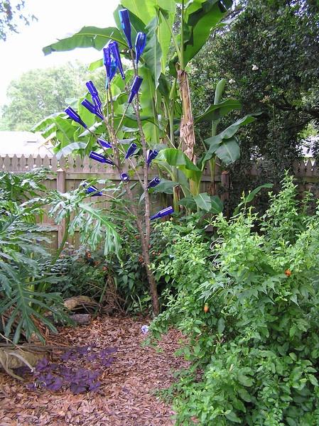 Blue Bottles For Bottle Tree   Cottage Garden Forum   GardenWeb