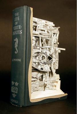 wow! book art