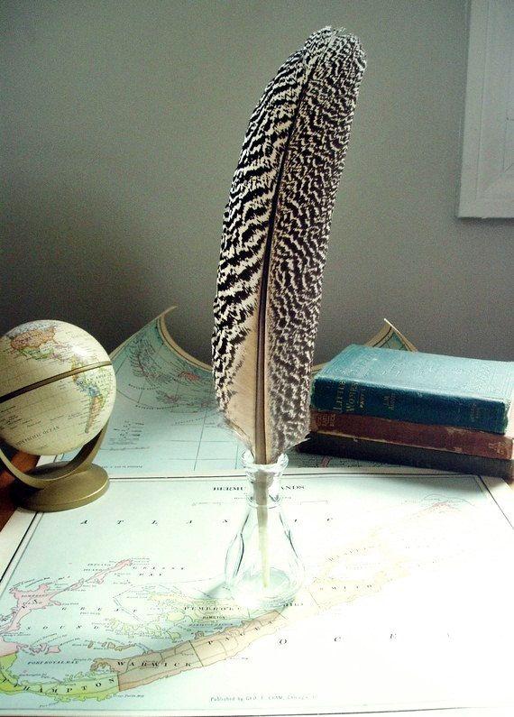 peacock quill pen - quite the fancy pen