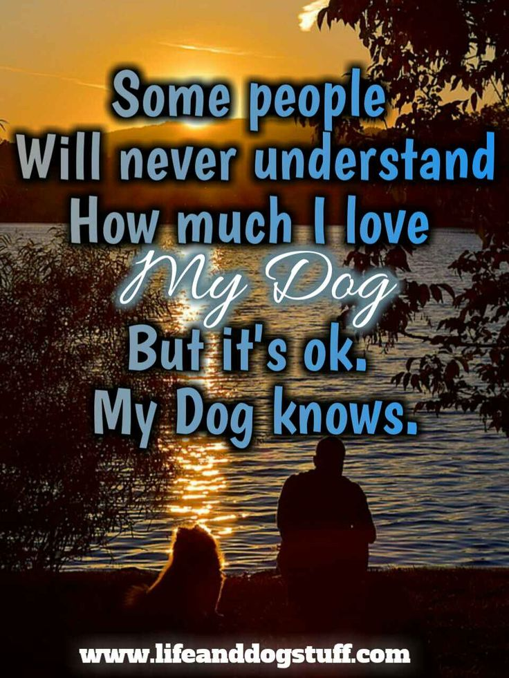My dog knows........