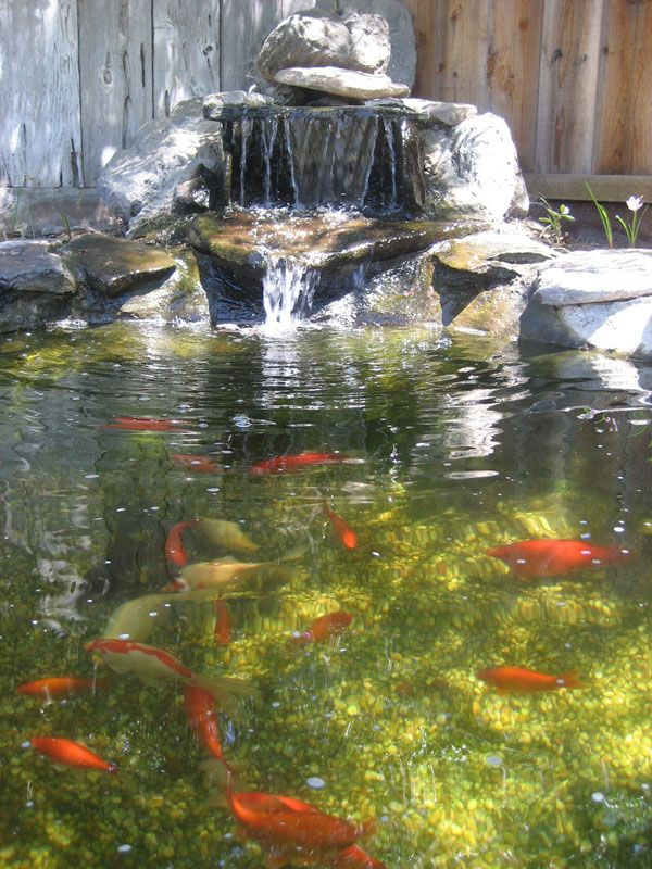 Backyard Waterfalls Ideas pond with waterfall Koi Pond Waterfalls