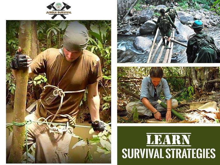 Everyone should know some #survivalskills that can be used at times of danger and disasters. Live training in the dense forests of Madhya Pradesh, India, post the best possibility to learn coping and combat skills.  Book most suitable batch this October. visit: http://www.bandhavgarh365.com/jungle-survival-activity/  #junglesurvival #wildernesssurvival