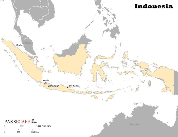 Indonesia location within SE Asia