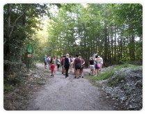 Geführte Wanderungen durch das Tauglgries gibt es von Mai bis September