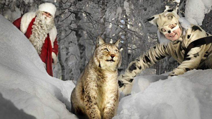 Santa Claus in Ranua Wildlife Park -Lapland, Finland