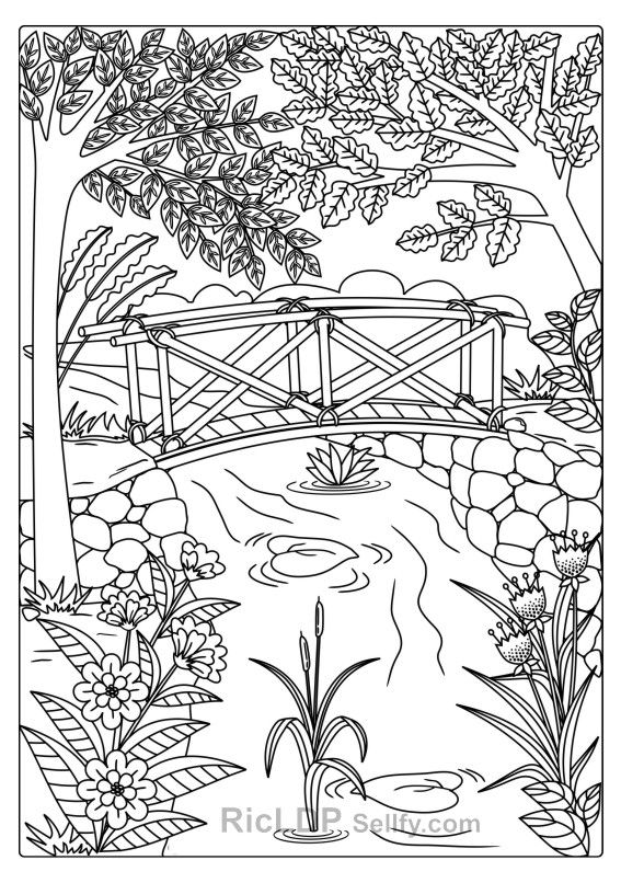 Twenty Adult Coloring Pages Coloring Pages For Grown Ups