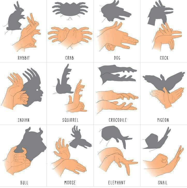Animal shadows with hands