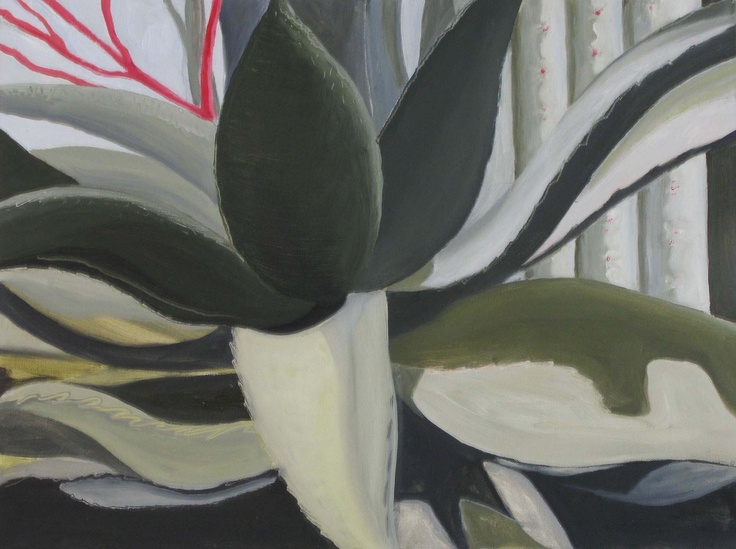 'Agave' oil on canvas 450x600mm. Now sold and on the Isle de Re.