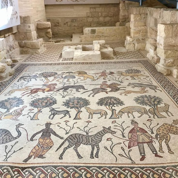 Mount Nebo reputed to be place where Moses is shown the Promised Land by God.  Here you see the well preserved Mosaic at the small Basilica. @visitjordan @myjordanjourney #jordan #travel #holysite  #lovehistory #ancient. ...................................................................On top of Mt Nebo this modest church or more accurately basilica was built around 4th-century foundations in 597 and has just undergone major reconstruction. It houses some of the best (and best presented)…