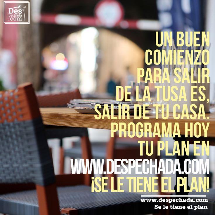 No te prives del mundo, Despechada te tiene el plan. Ingresa a www.despechada.com #seletieneelplan