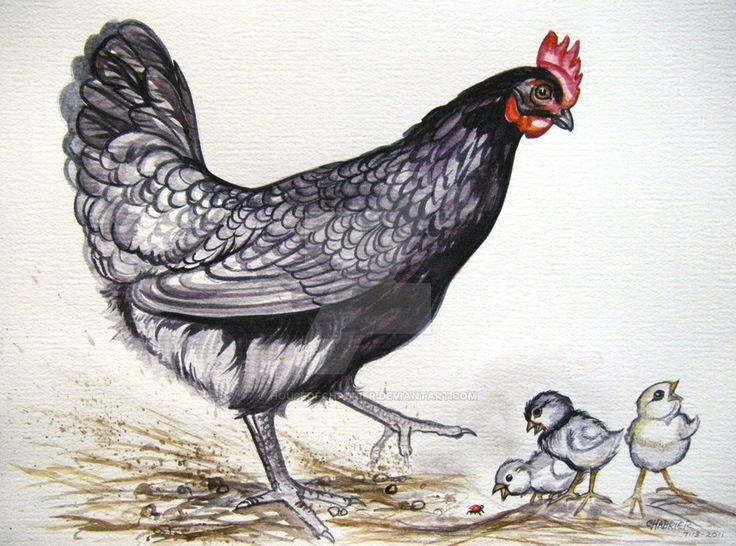 Mom and Chicks by HouseofChabrier.deviantart.com on @DeviantArt