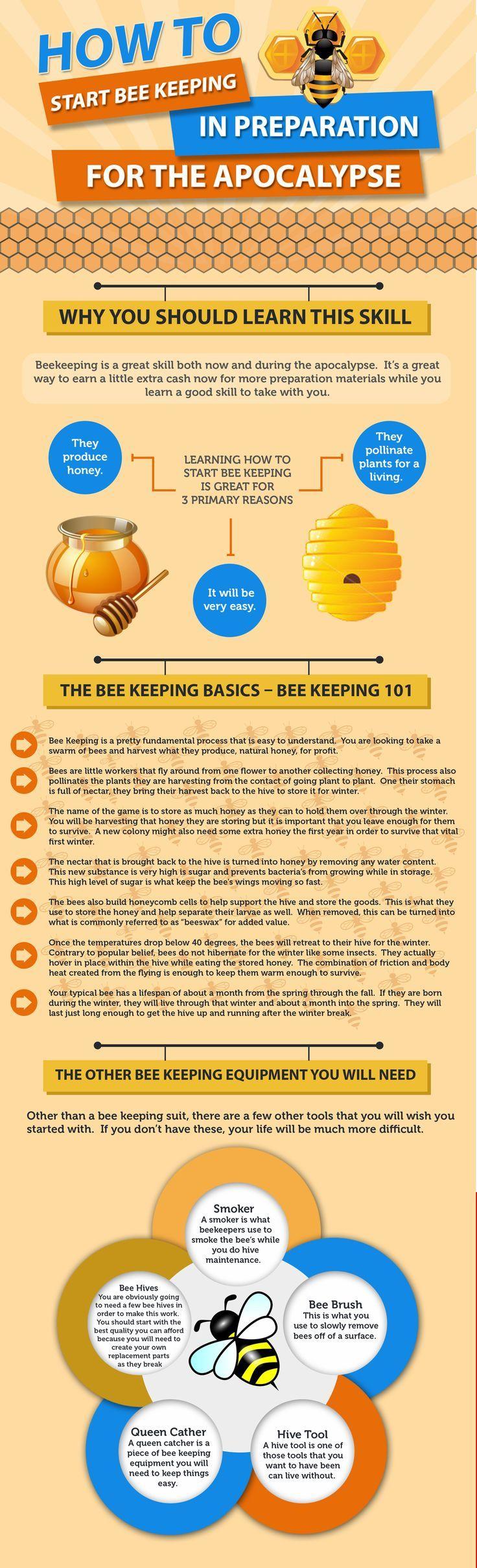 Best Beekeeping Images On Pinterest Bee Keeping Honey Bees - Backyard beekeeping for beginners