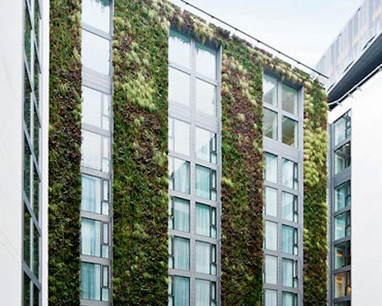 London's Mint Hotel features a super tall vertical garden.