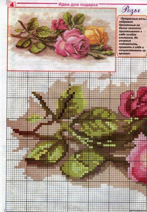 Rose Cuttings part 1