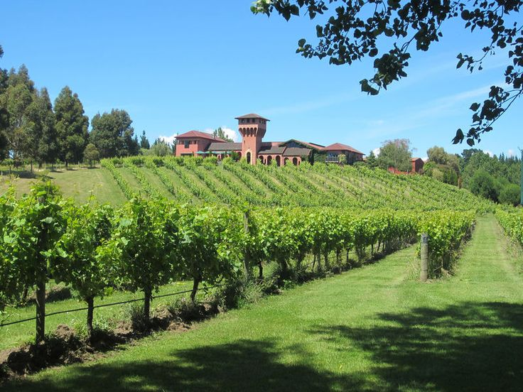 Highfield #winery #marlborough #nz
