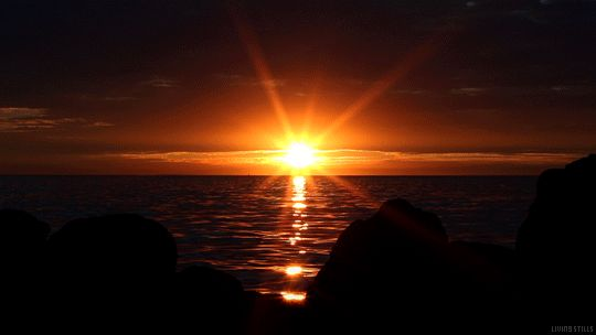 """""""There is no sunrise so beautiful that it is worth waking me up to see it."""""""