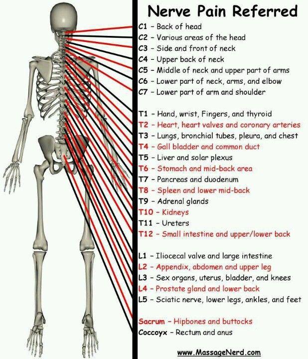 Black deepthroat massage