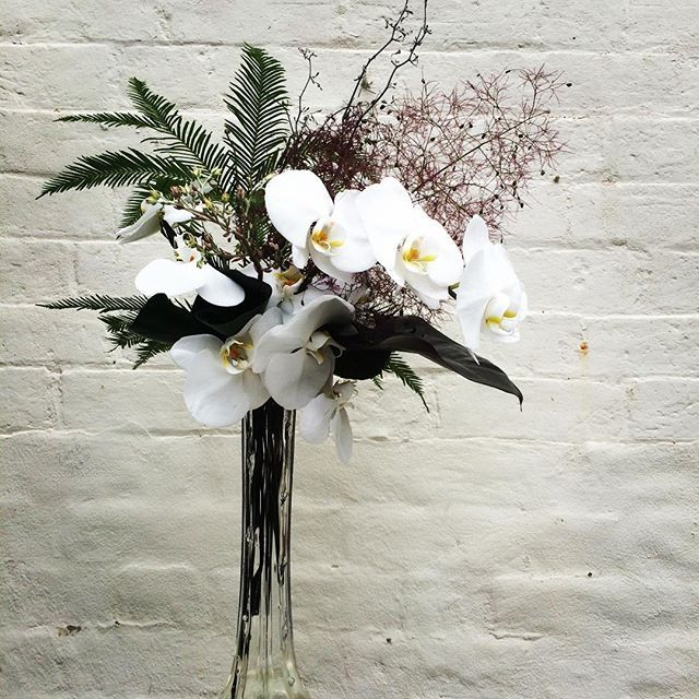 Bloodwood Botanica | Sculptural elegance  Wedding arrangement  White Phalaenopsis Orchid, Smoke Bush & Umbrella Fern