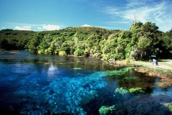te wailoropupu springs- new zealand's south island.
