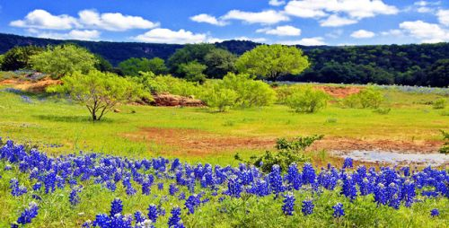 about-usa:Texas Hill Country - Texas - USA (byJerry and Pat... IFTTT Tumblr