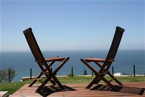 Whale watching in Cape town? Visit the venue named as the best destination in the world by Tripadvisor!