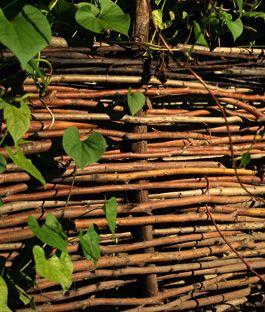 Een wilgenscherm maken? KARWEI helpt je stap voor stap een natuurlijke tuinafscheiding van gaas en wilgen te maken. Alles over materialen, voorbereiding en het vlechten van wilgentakken.