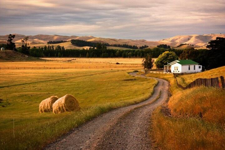 Autumn, field, mountens, road