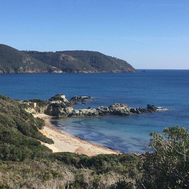 Buongiorno dalla spiaggia di #Laconella a #capoliveri #elba nello scatto di @living.elba. Continuate a taggare le vostre foto con #isoladelbaapp il tag delle vostre vacanze all'#isoladelba. Visita http://ift.tt/1NHxzN3