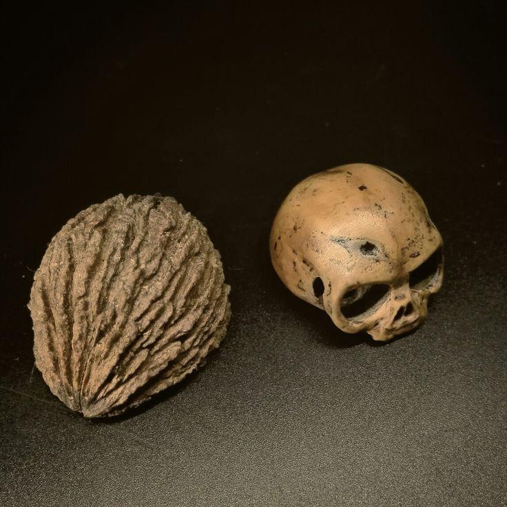 Nut to skull