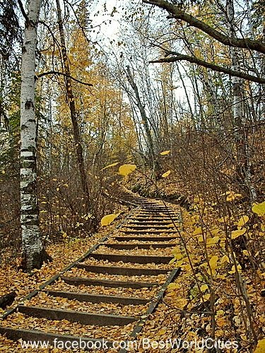 Edmonton Alberta (Canada). I biked these trails as a kid/young adult a thousand times!