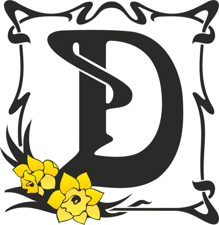 Best D Is For Dubravka Images On   Letter D