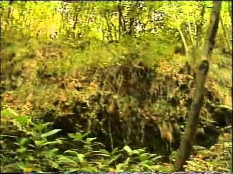 I Percorsi dello Spirito: La Via Francigena - parte sesta - da Pontremoli a Massa - YouTube