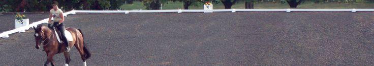 Dressage Arenas -- How to set up a Dressage Arena http://premierequestrian.blogspot.com/
