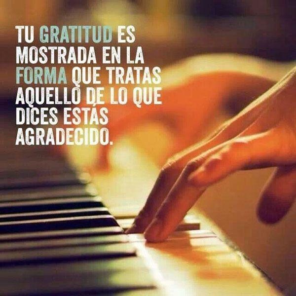 Tu gratitud es mostrada en la forma que tratas aquello de lo que dices estás agradecido.