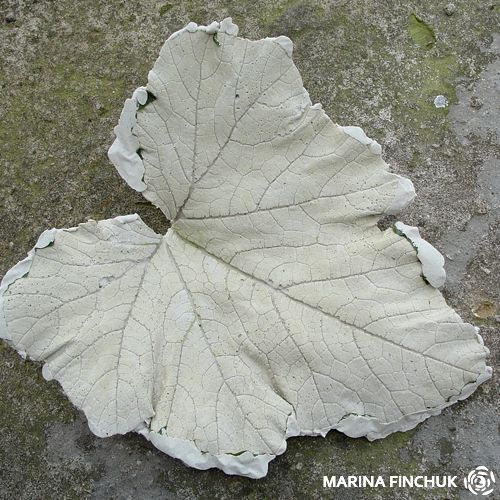 гипсовый лист кабачка 1