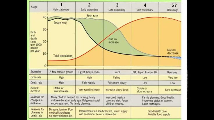 Demographic Transition Model - Do you agree with it