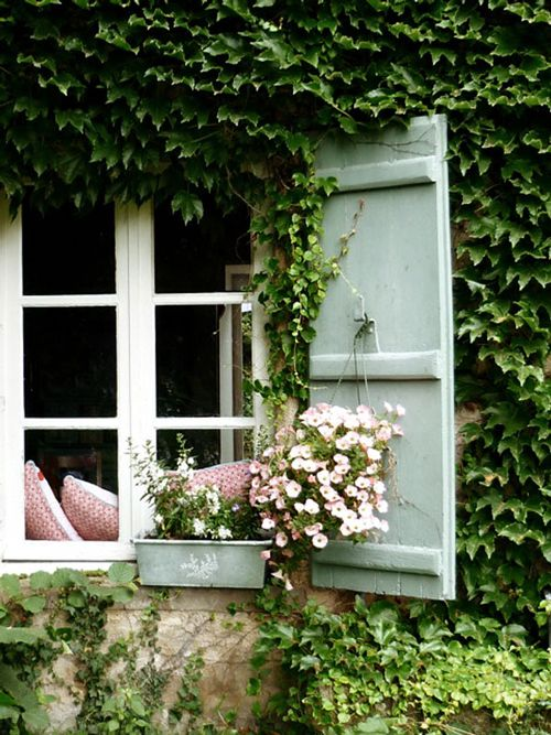 Shutters set against an ivy covered wall have a storybook feel