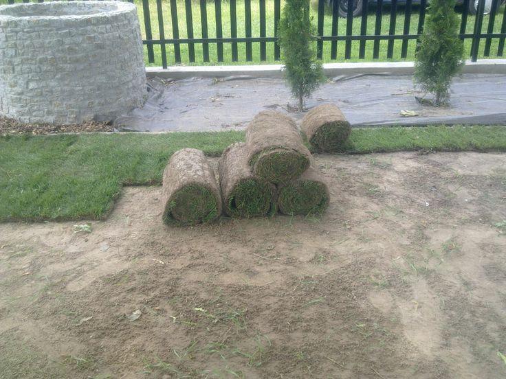 Zwinięta trawa w rolkach