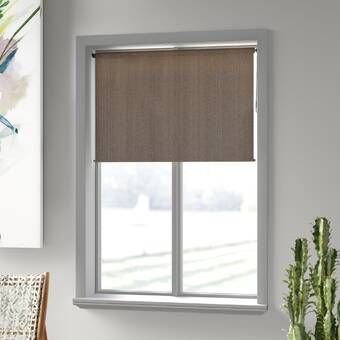 Coolaroo Outdoor Roller Shade Reviews Wayfair Ca In 2020 Roller Shades Charlton Home Shades Blinds