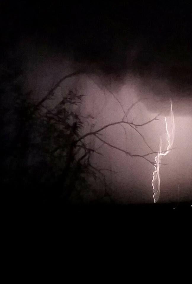 Lightning Rose Strikes Twice